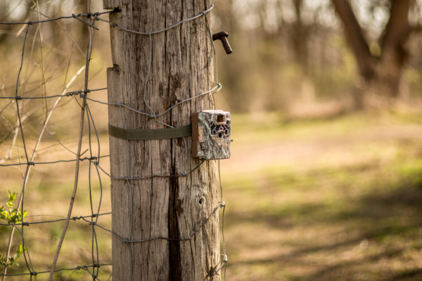 camera up where they have the most activity coming in and out of your land near some edges or bottlenecks so you don\u0027t disturb bedded deer. Browning Trail Cameras Blog |